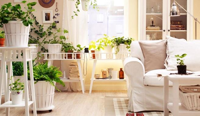 Saiba-como-decorar-a-casa-no-Verao