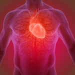 Quais são os fatores de risco para Doenças Cardiovasculares?